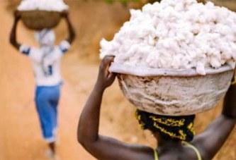 Usine de transformation du coton au Burkina: 50 000 emplois indirects attendus dans six mois
