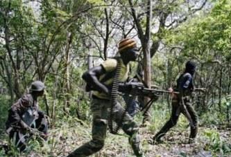 Sénégal: Tuerie en Casamance, huit suspects placés sous mandat de dépôt