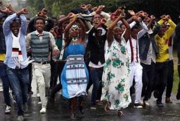 Ethiopie : des festivaliers abattus