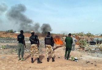 Burkina Faso : Plus de 1300 peaux d'ânes incinérées à Ouagadougou