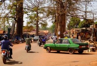Bobo-Dioulasso : un serpent mord un motocycliste en plein centre-ville