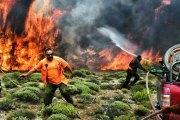 Incendies en Grèce : au moins 79 morts et plus de 160 blessés