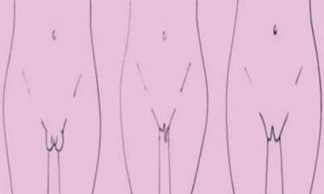 Il existe 10 types de vagins dans le monde