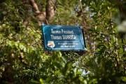 Débaptisation de l'Hôpital Blaise Compaoré : Pourtant Blaise a rendu hommage à ses prédécesseurs