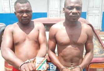 Côte d'Ivoire/ Deux braqueurs arrêtés par la gendarmerie à Daloa