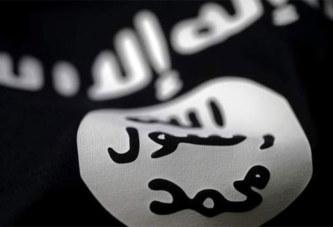 Sur combien de djihadistes l'EI peut-il encore compter?