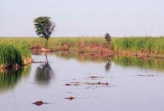 """Sénégal: La pluie se fait rare et un ancien député pense qu'il y a """"trop de péchés"""""""