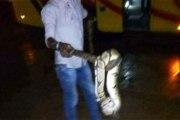Côte d'Ivoire: En plein voyage, un serpent apparaît dans un car et sème la panique