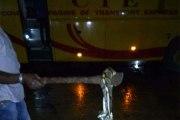 Choc- Une femme se transforme en serpent dans un bus rempli de passagers et tente de …