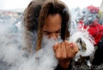 Afrique du Sud : La légalisation du cannabis réjouit des guérisseurs traditionnels