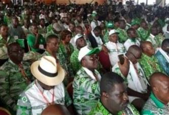 Côte d'Ivoire : Présidentielle 2020, le candidat du PDCI sera designé à l'issue d'une convention en 2019