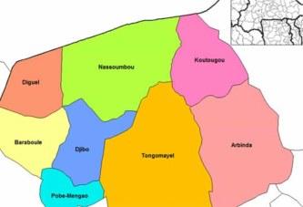 Burkina Faso: la situation difficile des déplacés internes de la province du Soum