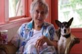 Une veuve milliardaire lègue toute sa fortune à son chien pour punir ses enfants