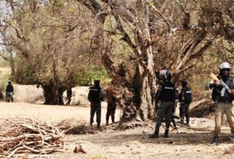 Burkina Faso: Le poste forestier de Tasmakat dans le Sahel attaqué