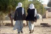 Mali: Plusieurs touaregs exécutés par des bandits armés près de la frontière nigérienne