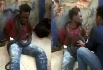 Indonésie / La police le torture avec un serpent: il avoue tout