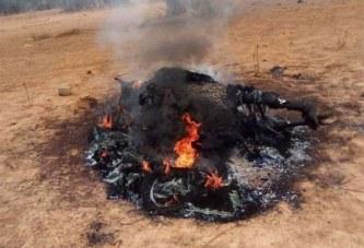 Sanmatenga: Un taureau tue son propriétaire à Korsimoro