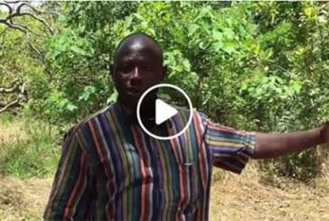 Forêt de Kua : «C'est la 2e plus grande réserve d'eau en Afrique de l'Ouest» (Drissa Millogo, SG syndicat des travailleurs de l'environnement)
