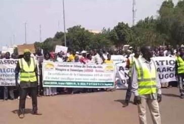Burkina : «L'heure est grave en matière de logement !», clament des manifestants