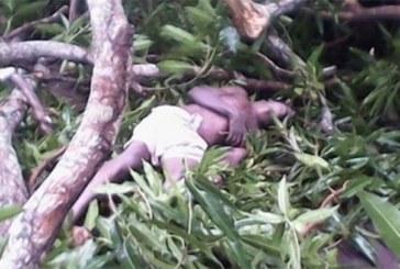 Côte d'Ivoire: Une dame foudroyée par un orage à Maniasso (Tengréla)