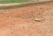 Burkina Faso – Région de l'Est: Deux femmes tuées par l'explosion d'une mine
