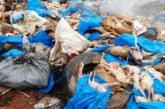 Ouagadougou : des poulets impropres à la consommation déversés à l'arrondissement 6, une enquête ouverte