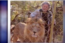 Afrique du Sud: un homme tué par ses propres lions