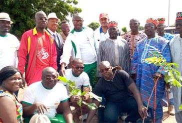 Protection de l'environnement: ACP opte pour le reverdissement des espaces verts