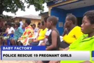 Vidéo. Nigeria: 19 jeunes filles «gestantes» ou «allaitantes libérées d'une «usine à bébés»
