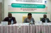 Propriété intellectuelle: La protection des obtentions végétales au cœur d'un séminaire