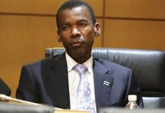 Le Botswana veut légaliser la médecine traditionnelle