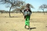 Attaque de Kompienbiga : La population va battre le pavé à Pama suite à l'attaque du marché à bétail