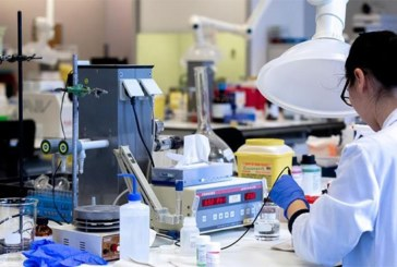 Covid-19 : un essai clinique avec du sang de ver marin démarre en France, dix malades vont servir de cobayes