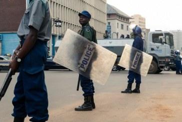 Coronavirus : au Zimbabwe, un opposant poursuivi pour «insulte» au président