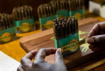 Des cigares «made in Zimbabwe»