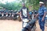 Banditisme : la brigade territoriale de gendarmerie de Pô  démantèle un réseau de malfrats