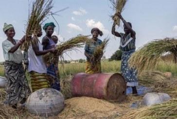 Le financement participatif de proximité : un atout pour l'Afrique de l'Ouest