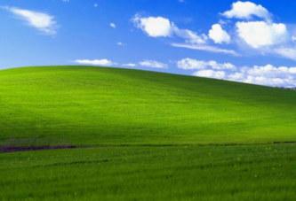 L'incroyable histoire du fond d'écran Microsoft le plus connu de la planète