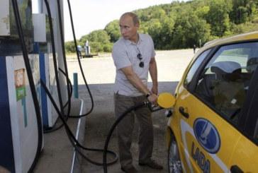 24 Photos De Vladimir Poutine, Un Président Pas Comme Les Autres