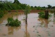 Echos de l'Ouest:   116 mm de pluie tombée à Niangoloko