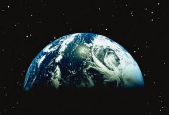 La Terre a connu 5 extinctions de masse, voilà ce qui nous attend avec la 6e qui vient de débuter