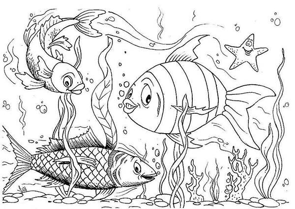 fish tank coloring pages sketch coloring page