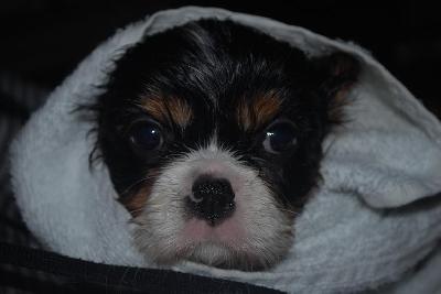 Det var bra mycket b�ttre med en handduk!!!!