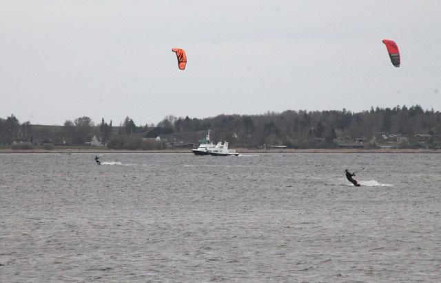 Færgen Virus - her fanget på Holbæk Fjord - skal vikariere i de kommende dage for den ordinære Orø-færge. Foto: Rolf Larsen.