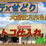 【旅行×せどり】 コストコ仕入れで大量利益獲得?! 〜in北陸〜