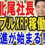 【SBI北尾社長】リップルXRP稼働!大躍進が始まる!!【仮想通貨】