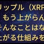 リップル(XRP)はもう上がらん?そんなことは無い!上がる根拠を考察