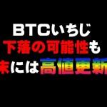 BTC は止められないし 止めるべきではない  仮想通貨(ADA)で億り人を目指す!近未来戦士ヒロミの暗号通貨ライフ