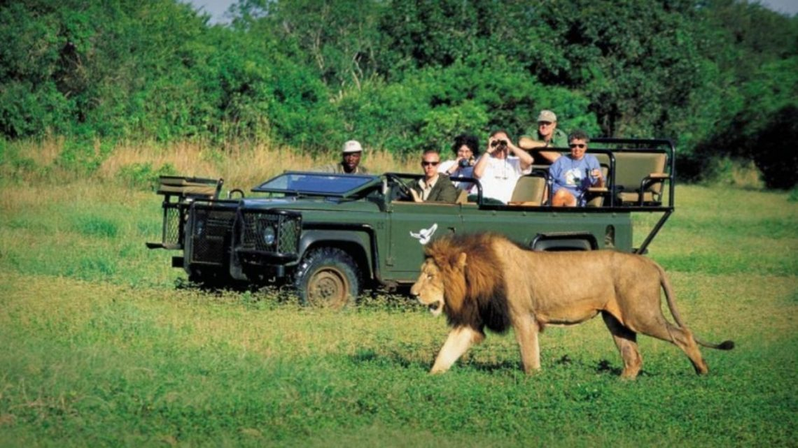 Coronavirus Consequences on Tourism