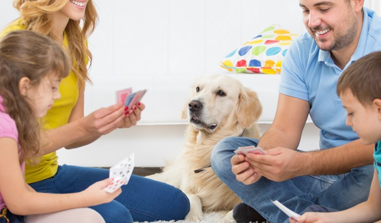3 kid-friendly card games for families